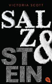 Cover Salz & Stein